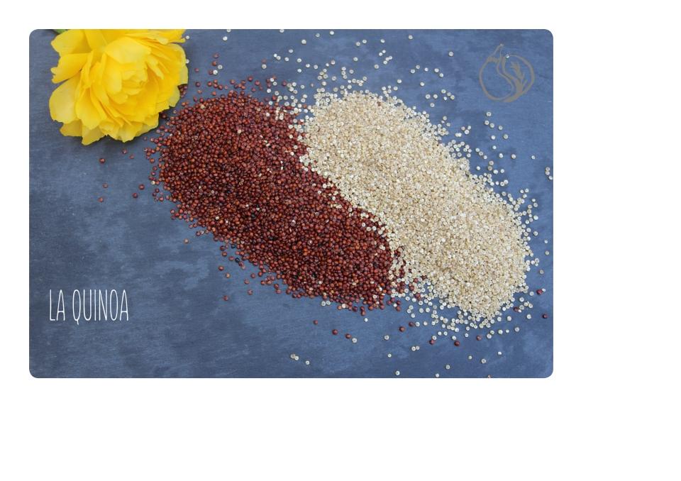 la quinoa.jpg