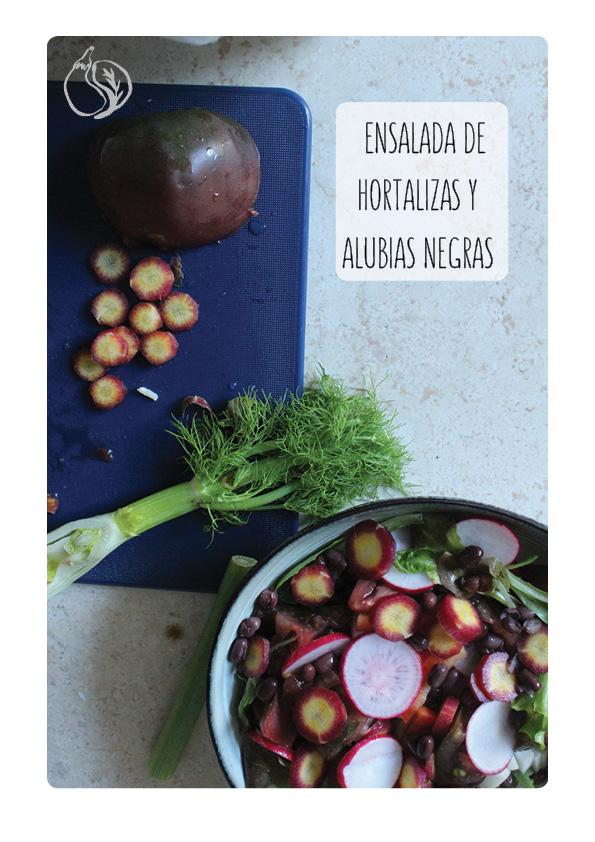 ensalada hortalizas y alubias